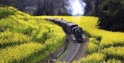 小火车简笔画-小火车简笔画图片彩色/小班小火车简笔