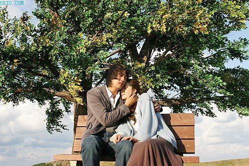 两棵树的爱情