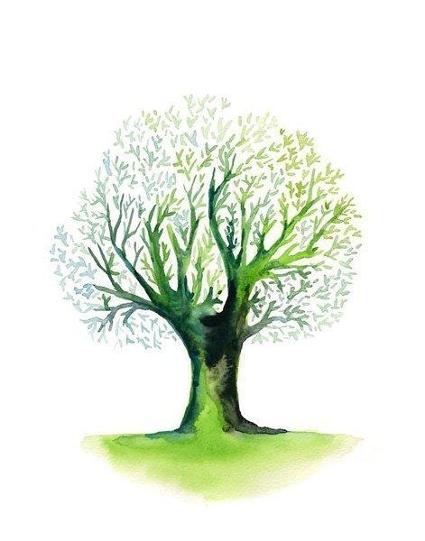 那些树儿:ireart的小清新水彩画