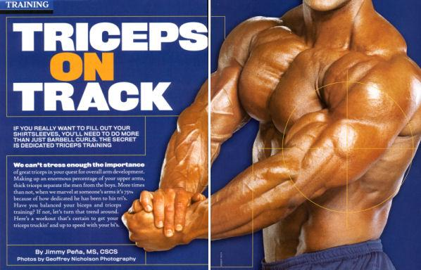 正确刺激肱三头肌的锻炼方法>