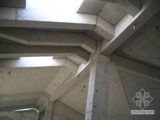 别墅主体斜坡屋面钢筋,模板施工质量图片