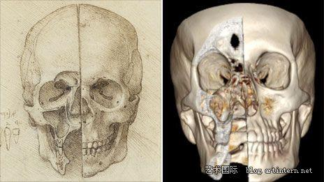 女王画廊举办史上最大达芬奇人体解剖素描图展