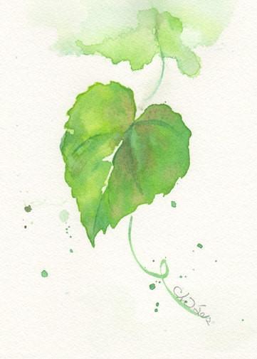 小清新植物动物水彩画