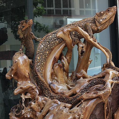 《i-创意家居》 投资收藏/天然根雕奇石/木雕/老槺木根抱石/yw182蜥蜴